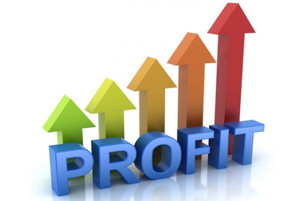 addbacks to profit